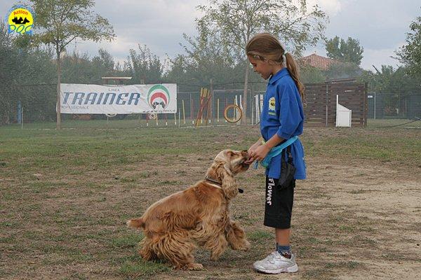 019-il-cane-impara-giocando-stage