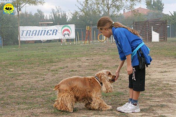 022-il-cane-impara-giocando-stage