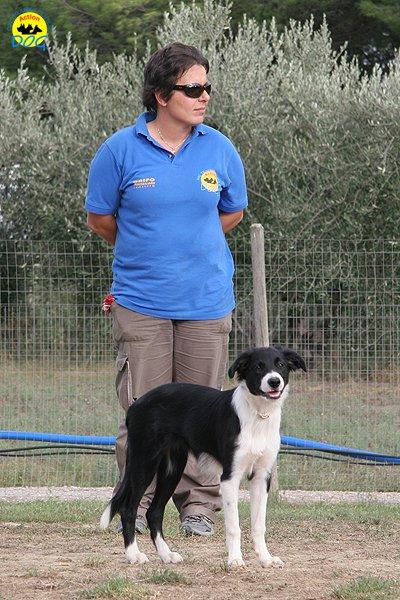 065-il-cane-impara-giocando-stage
