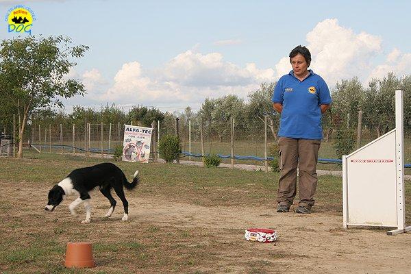 067-il-cane-impara-giocando-stage