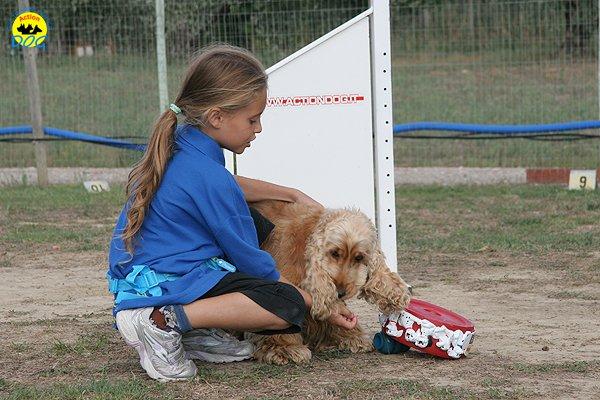 079-il-cane-impara-giocando-stage