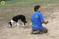 012-il-cane-impara-giocando-stage