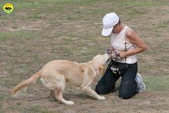 018-il-cane-impara-giocando-stage