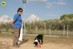 064-il-cane-impara-giocando-stage