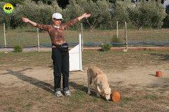077-il-cane-impara-giocando-stage